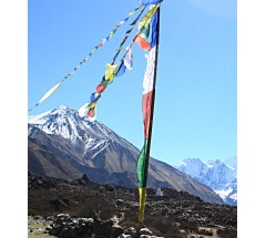 Tibetan Prayer Flags, Vertical - LARGE