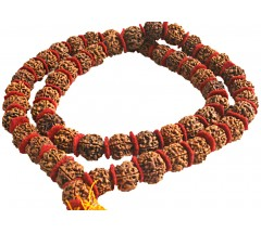 Rudrakshya Mala from Nepal - 6 FACES - 54 Beads, 15-16 mm