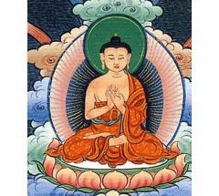 Life of Buddha Thank