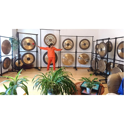 Planetary Gong master professional course in Germany on 11-12 Janyary 2020